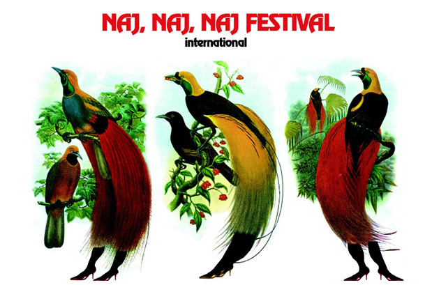 naj_naj_naj_festival_international